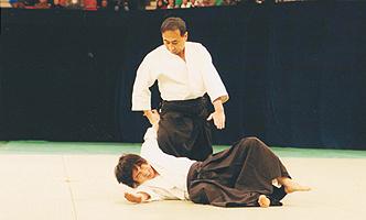 日本古武道協会設立記念演武大会